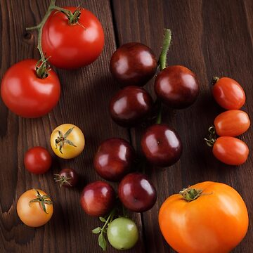 Organic heirloom tomatoes of different sizes and colors artistic still life art photo print by AwenArtPrints