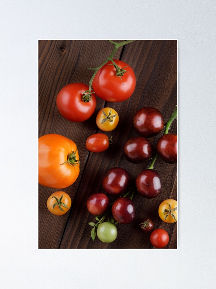 Organic Heirloom Tomatoes Of Different Sizes And Colors Artistic