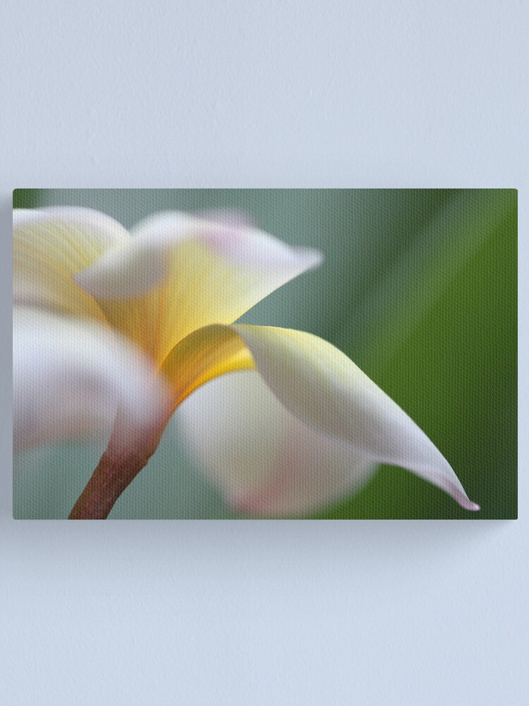 Alternate view of windy flower Canvas Print