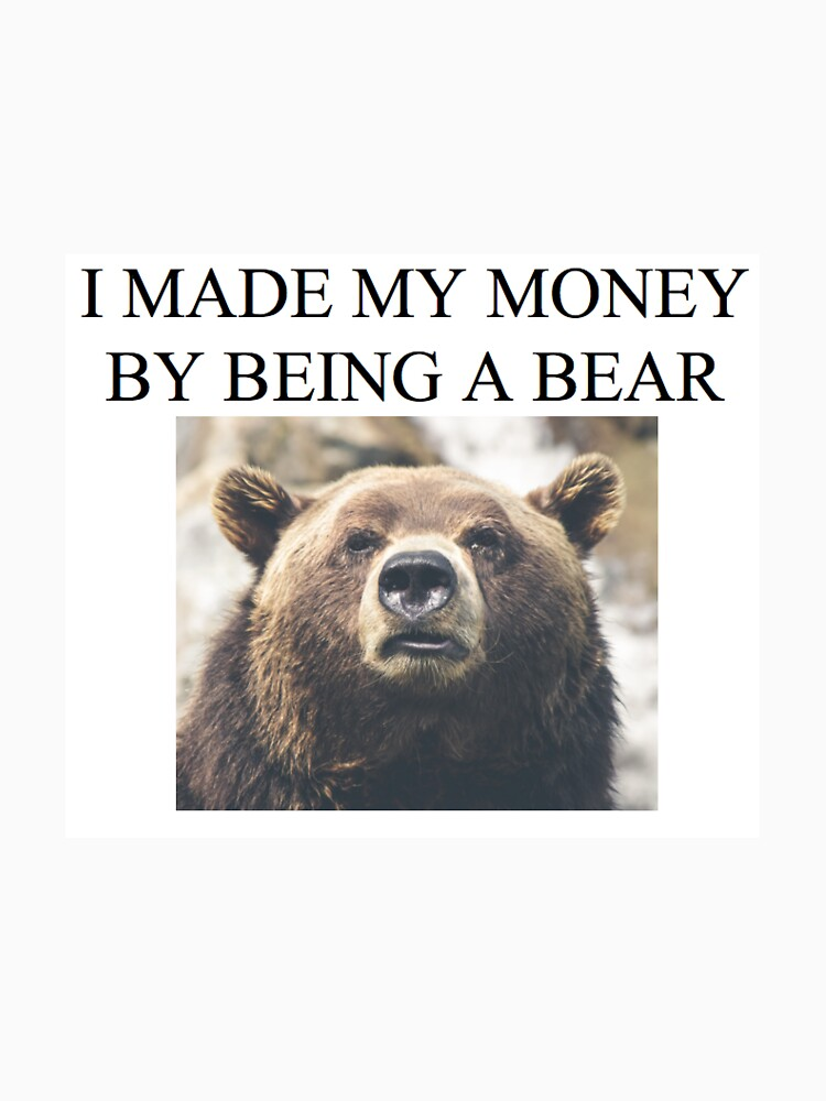 STOCK MARKET BEAR I made my money by being a bear by antiquestocks