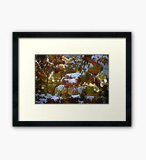 Leaves Snow Framed Print