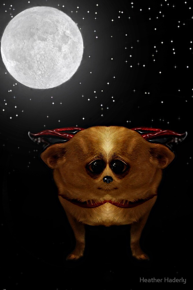 Cuddly Vampire Chihuahuas from Space by Heather Haderly