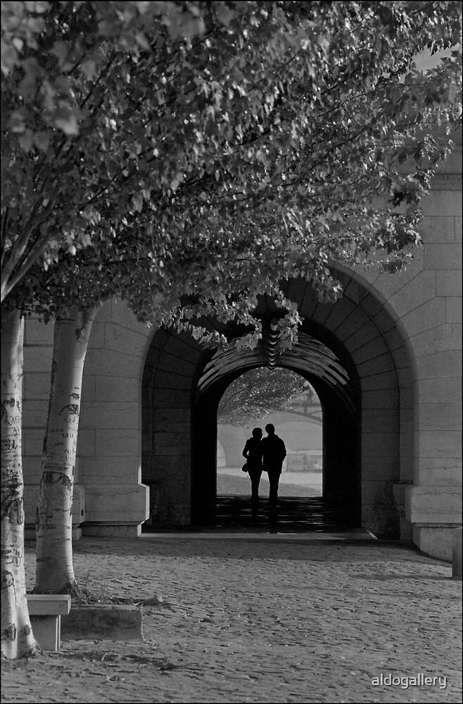 Promenade sur la Seine, Paris by aldogallery