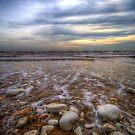 Rocky Beach by Svetlana Sewell