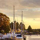 Sunrise at Fisherman's Wharf, Port Fairy, Victoria by Christine Smith