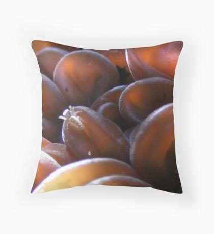 Spider on Fungi Throw Pillow