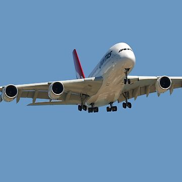 Airbus A38 about to land at Adelaide Airport, Australia by gigges