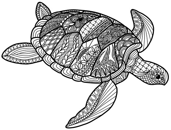 Coloring Book Style Sea Turtle Ocean Life Doodle Art 2018 ...