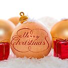 Merry Christmas decorations by Vasily
