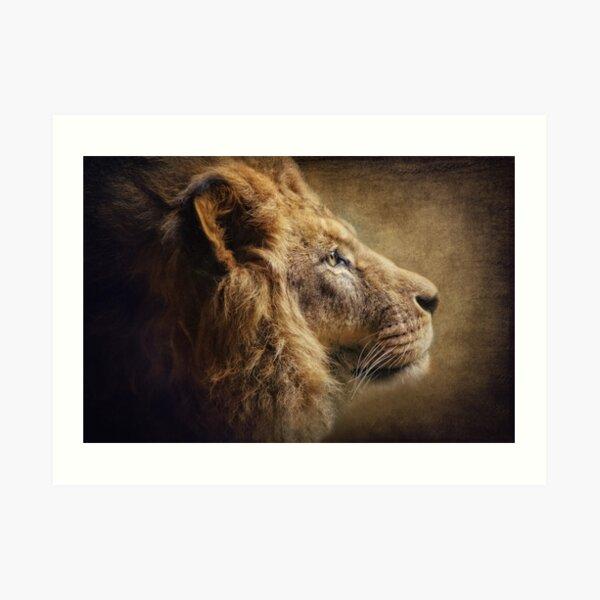 The Lion Portrait Art Print