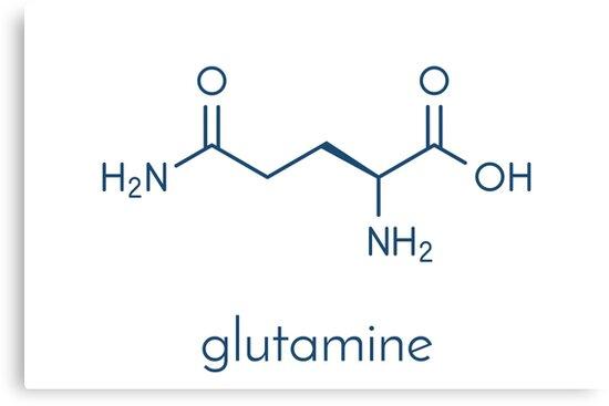 quotglutamine lglutamine gln q amino acid molecule