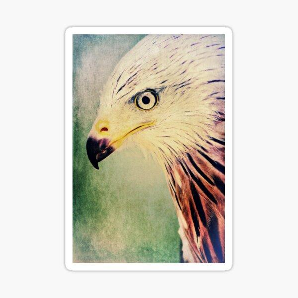Red Kite Art Sticker