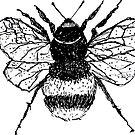 Biene von Kuhtina