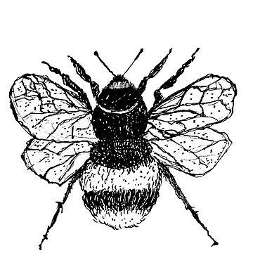 Bee by Kuhtina