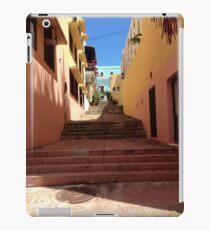 San Juan iPad Case/Skin