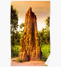 Cathedral Termite hills of Litchfield Poster