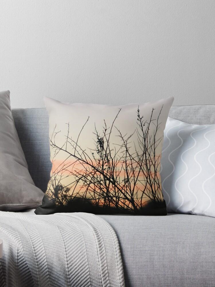 Setting sun by chihuahuashower