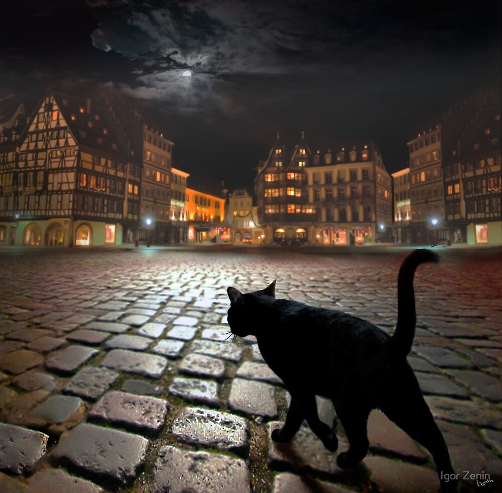Strasburg by Igor Zenin