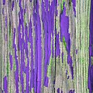 Rustic weathered wood in purple by chihuahuashower