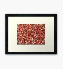 Red Palmn Fruit-(Macro) Framed Print