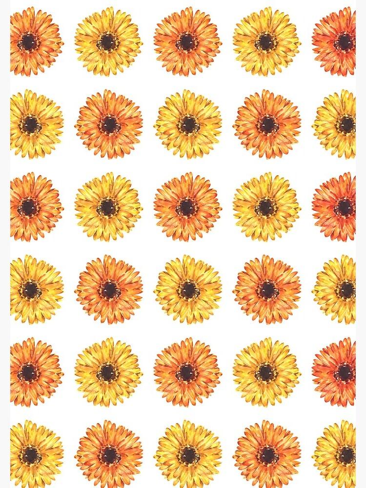 Colorful Gerbera Daisy Flower Pattern by erika-lancaster