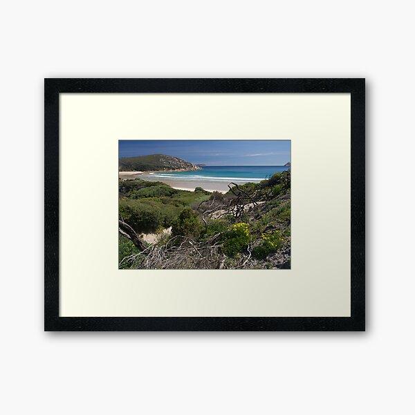 Wilsons Promontory NP, Victoria.  Framed Art Print