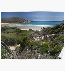 Wilsons Promontory NP, Victoria.  Poster