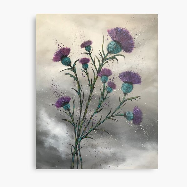 Scottish traditional purple thistle  Metal Print