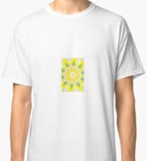 Four Feather Falls Classic T-Shirt