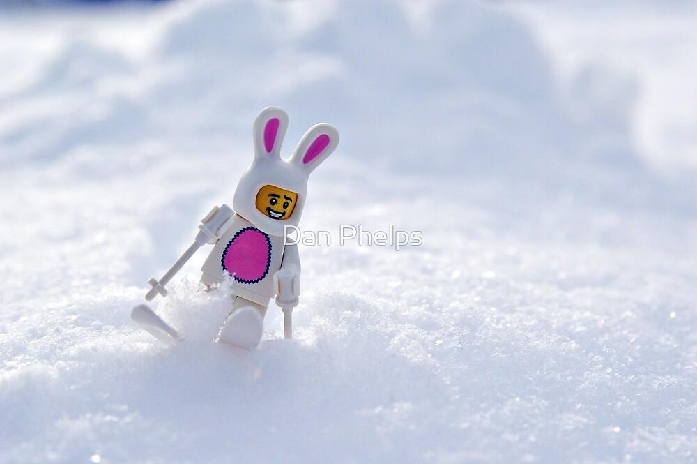 Snow Bunny by Dan Phelps