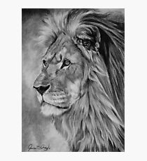 Remembrance - Cecil The Lion Photographic Print