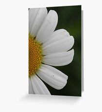 Bright and Happy  Greeting Card