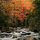 Rushing With Colours by Brittany Biel