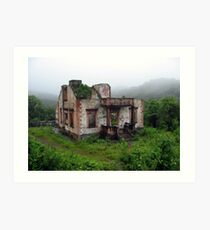 House in the Rain Forest Art Print