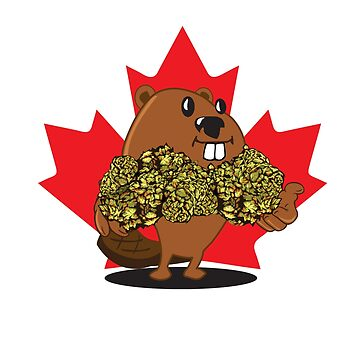 Bud The Beaver by kushcoast