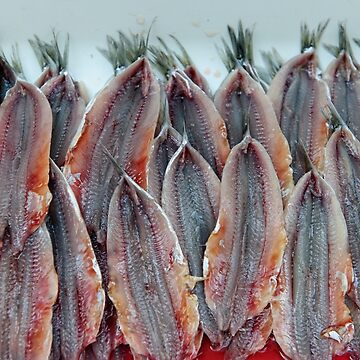 Neatly filleted anchovies, Amalfi, Campania, Italy by AndyJones