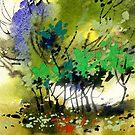Light in trees by Anil Nene
