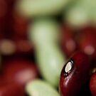Beans VI by Inés Montenegro