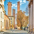 The towers of the parrots in Pavia by nicolagiordano