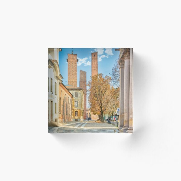 The towers of the parrots in Pavia Acrylic Block