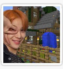 Pegatina Minecrafter Woo