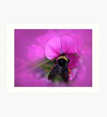 Bee Pink Art Print
