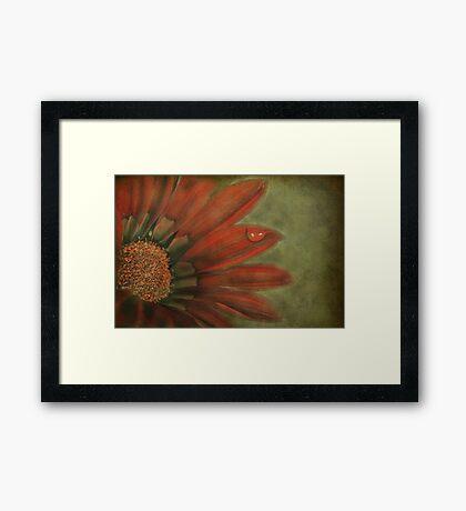 La Fleur Framed Print