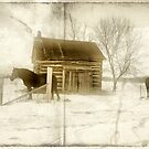 Horses and cabin by justimagine