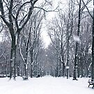 Snow in the city by Ryan McGurl