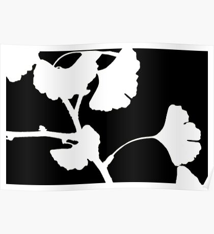 The Ghost Ginkgo. Poster
