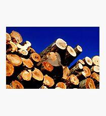 Firewood Photographic Print