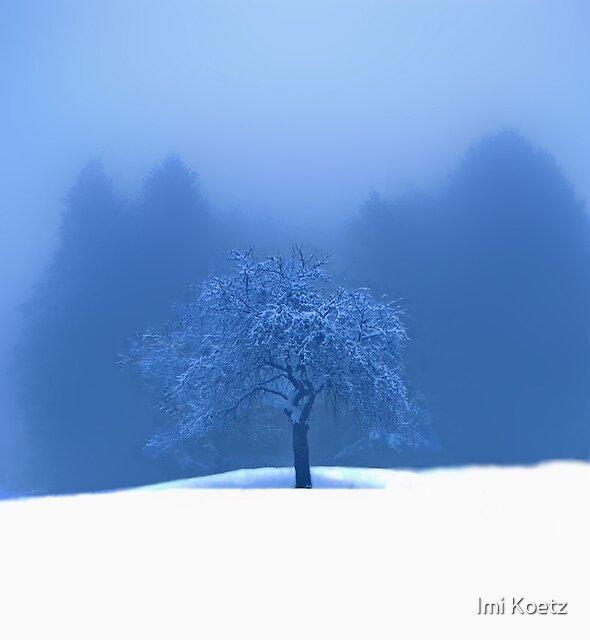 Black Forest by Imi Koetz