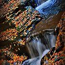 New York's Watkins Glen I by PJS15204