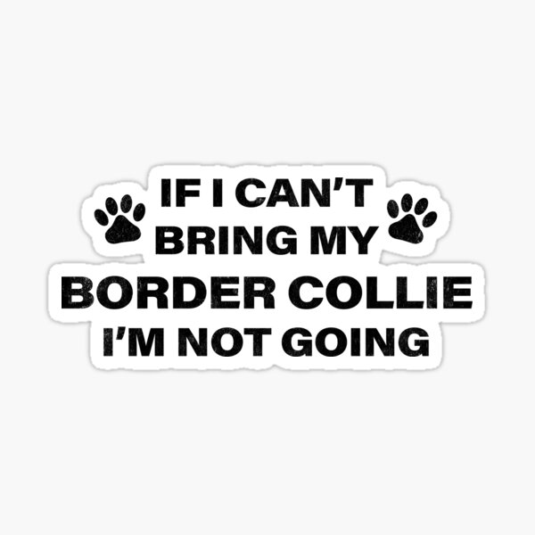 If I Can't Bring my BORDER COLLIE, I'm Not Going Sticker